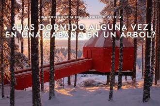 Treehotel_cabaña