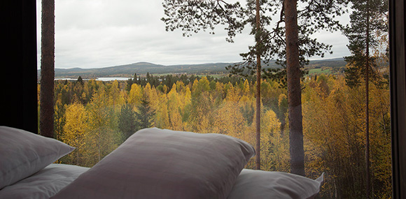 Treehotel_rect.164644-cabaña