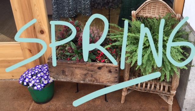 myshowroom-spring